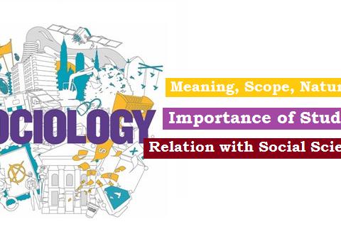 sociology introduction